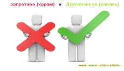 Хадис 6. Дозволенное (халяль) и запретное (харам)