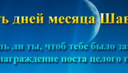 Пост в месяц Шавваль